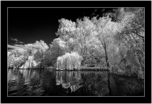 Like a poem, Reinfeld, Germany, infrared 850nm