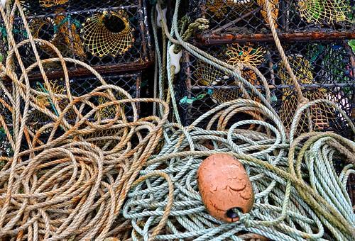 Fish baskets