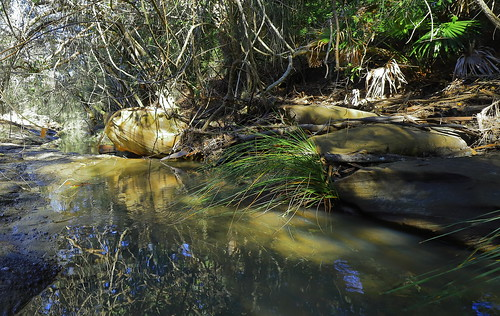 Yondeo Trail Creek.