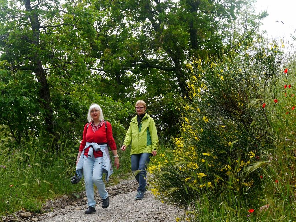 Wandern um Cortona / Hiking around Cortona