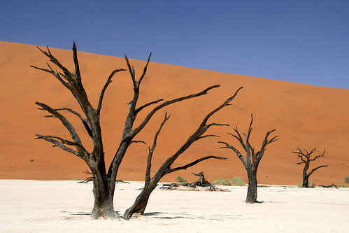 The Beauty Of Namibia