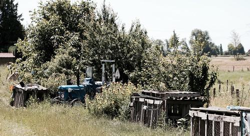 Weide / Tractor / Stevensweert