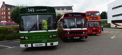 Stroud Bus Rally 2019 .... VAE 499T, BUH 240V and RAH 260W