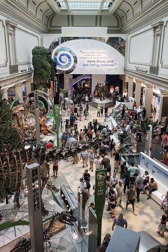 Smithsonian – David H. Koch Hall of Fossils