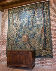 One of many old tapestries hanging around the residence