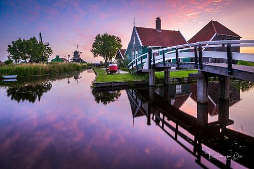 Dutch Summer Morning