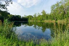 Episy fish pond - Photo of Nonville