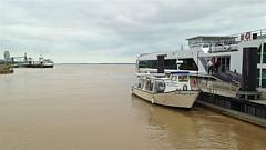 Photo 01. En naviguant dans l'estuaire de la Gironde Embarquement à Blaye à bord de l'Angélique - Photo of Villeneuve