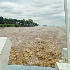 Photo 02. En naviguant dans l'estuaire de la Gironde. Sur la rive, carrelets pour la pêche - Photo of Villeneuve