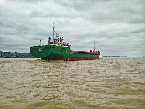 Photo 04. En naviguant dans l'estuaire de la Gironde. Rencontre forfuite. Il est en route vers l'Océan Atlantique