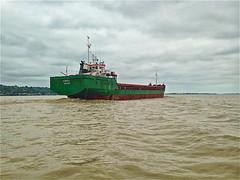 Photo 04. En naviguant dans l'estuaire de la Gironde. Rencontre forfuite. Il est en route vers l'Océan Atlantique - Photo of Samonac