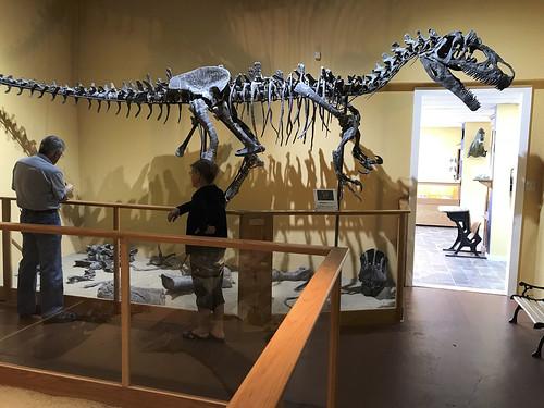 dinosaur museum glenrock wyoming_0120 (1)