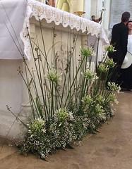 Autel pour mariage église Sanary-sur-mer - Photo of Sanary-sur-Mer