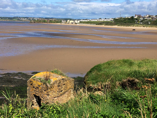 View from Ballystraw along the beach to Duncannon Co. Wexford