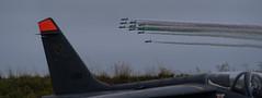 Alpha Jet, MB-339 - Photo of Sanguinet