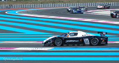 Maserati MC12 GT1 2005 Chassis 007 / ZAMDF44B000015443 - Altfrid Heger (GER) / Alex Margartitis (GRE) - Photo of Le Beausset
