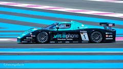 Maserati MC12 GT1 2005 Chassis 002 / ZAMDF44B00015439 - Michael Bartels (GER) / Andrea Bertolini (ITA)