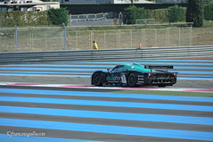 Maserati MC 12 GT1 2010 chassis 004 / ZAMDF44B000015441 - Miguel Ramos (POR) / Enrique Bernoldi (BRE)