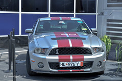 Shelby GT 500 2010 - Photo of Le Beausset