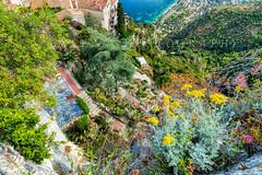 Panorama depuis le jardin exotique de Eze - Cote d'Azur France -1L8A3575 - Photo of Falicon