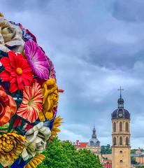 L'arbre-fleur...ou le flower tree pour parler à la mode - Photo of Lyon 1er Arrondissement