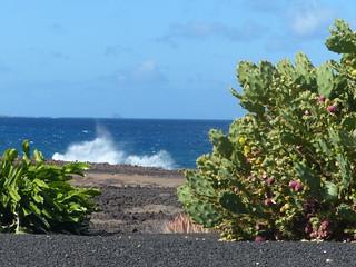 Üben und Urlaub auf Lanzarote