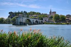Avignon - Photo of Avignon