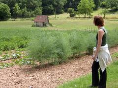 lapopie-pechmerle 050 - Photo of Lentillac-du-Causse