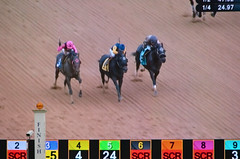 2018-11-02 (17) r7 on the tote board - Kevin Gomez on #3 Rare Eagle for the win