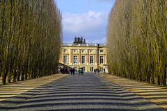 Avenue du Petit Trianon, Versailles gardens, Paris - Photo of Vaucresson
