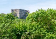 2118 Le château d'Alba-la-Romaine
