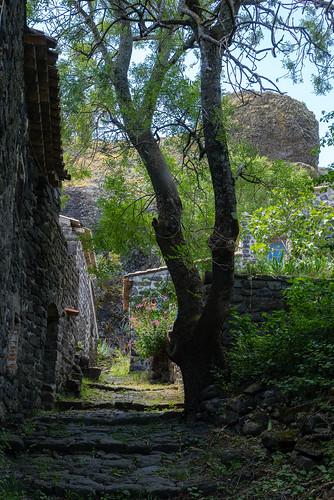 2294 Le village de Sceautres