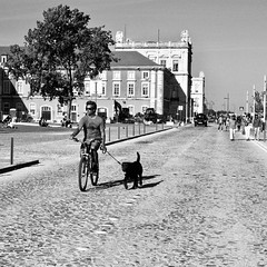 Riding the bike and walking the dog
