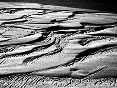 designs in the sand/Carmel River Lagoon/black and white