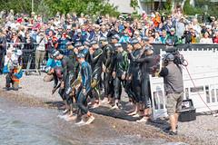 Professionelle Triathleten am Start der Wasserstrecke der Schwimmetappe des Ironman 70.3 in Lahti