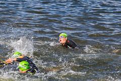 Ironman-Athleten, mit Badekappen und Schwimmbrillen, beim Kraulschwimmen im finnischen See Vesijärvi in Päijät-Häme