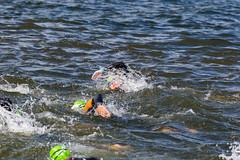 Schwimmer beim Kraulschwimmen in einem See, während des Ironman-Schwimmwettkampfs vor der Küste in Lahti, Finnland