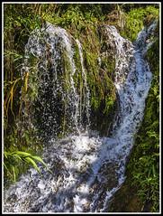 Fuentes del río Algar