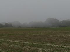 Vaux-sur-Aure, May 2018