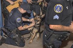 MTA Police Earn Top Honors