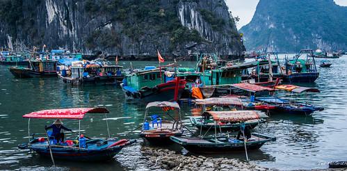 2019 - Vietnam - Halong Bay - 44