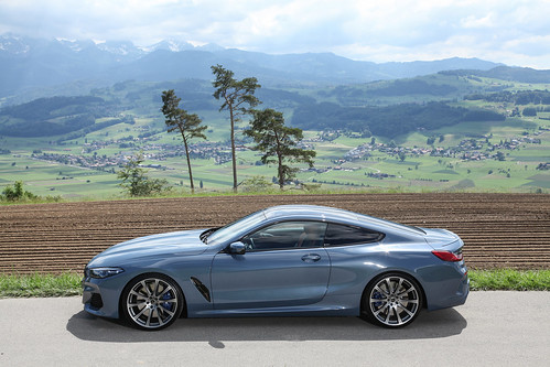 bmw_M850i_G15_bmw_tuning_dahler_daehler_forged_wheels_ (5)
