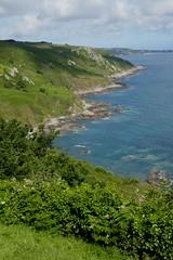 Au pays de Jean-Baptiste Millet, la côte du Cotentin, hameau de Gruchy, Gréville-Hague, Manche, Normandie, France.