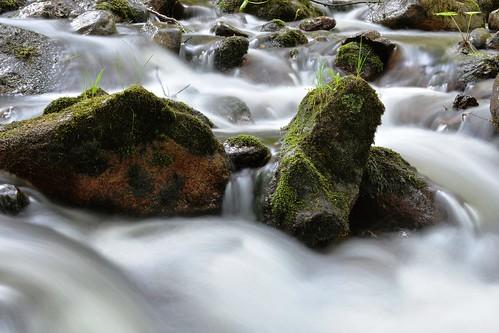 Archipelago Rapids