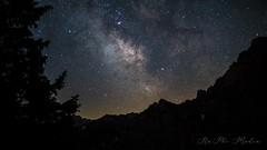 """Milky Way - """"Spitzwiesle"""""""