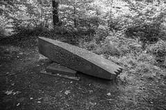 Hammerhead Sculptured Bench Dailly