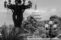 US Capitol and Bartholdi Fountain