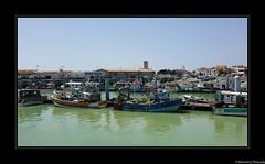 Le Port de la Cotinière- île d'Oléron- Charente Maritime- France