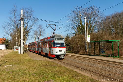 T4D-C+B4D-C 1191+1160+185 Am Stadtpark (IMG_5186-2)