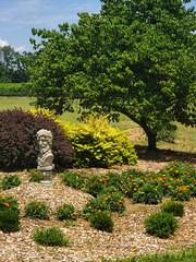 Landscaping at Hiddencroft Vineyards